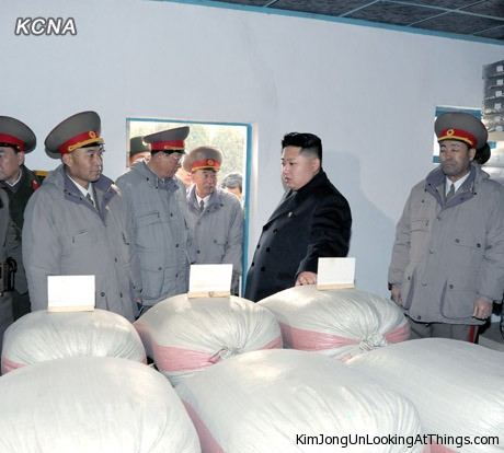 kim jong un loking at rice