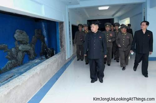 kim jong un looking at aquarium